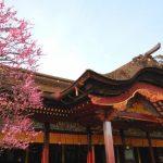 【일본 후쿠오카 자유 여행 필수 코스】현지인이 추천하는 인기 관광 명소 BEST10!