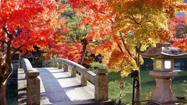 【6위】가을 단풍이 아름다운