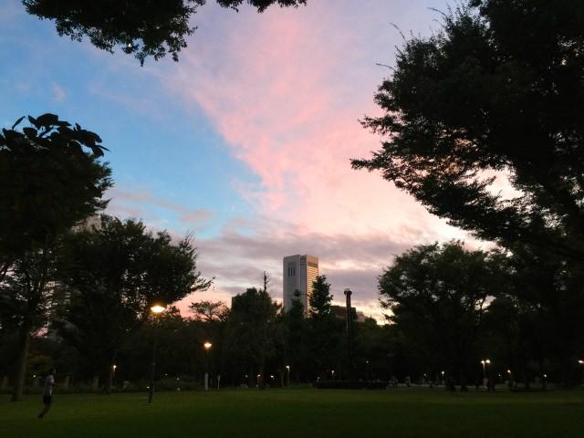 2. 신주쿠 총신수 쿠마노신사를 끼고 있는 「신주쿠 중앙공원」