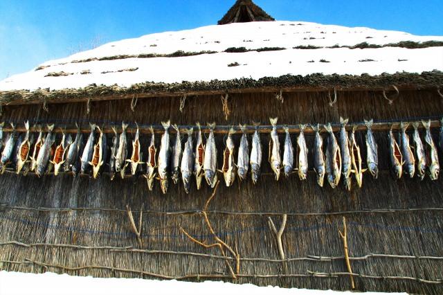 아이누 민족의 문화체험「아칸코 아이누코탄」