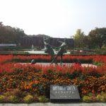 【후쿠오카 구루메시 자유 여행 필수 코스】현지인이 추천하는 인기 관광 명소 BEST10!