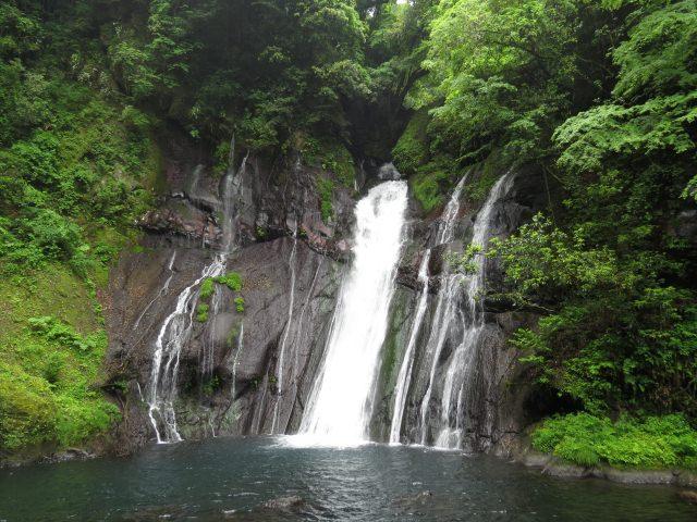 8. 원시림에 뒤덮인 절벽에서 흐르는 한줄기의 하얀 물줄기 '시라미즈노 타키(백수의 폭포)'